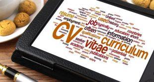 currículum profesional para el sector turístico