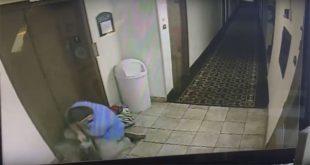 Hombre salva a perro de morir ahorcado en el elevador de un hotel