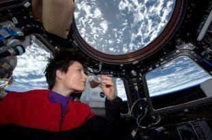 Astronauta y turista espacial