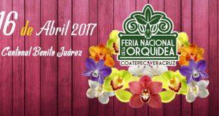 Feria Nacional de la Orquídea 2017