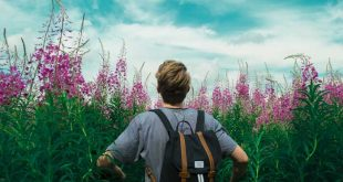 ¿Es verdad que los estudiantes de turismo se la pasan viajando?