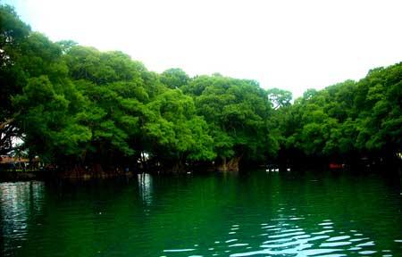 Parque-Nacional-Lago-de-Camécuaro,-Michoacán