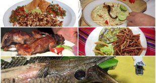 Gastronomía-mexicana-exotica