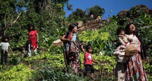 Pueblos originarios, cultura Mbya-Guaraní: Turismo, Cultura y Sostenibilidad