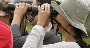 turistas-con-binoculares