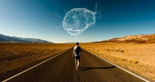 Cerebro-viajero