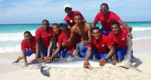 matan a tiburon y se toman foto con el