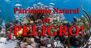 Sistema-de-Reservas-de-la-Barrera-del-Arrecife-de-Belice-en-peligro