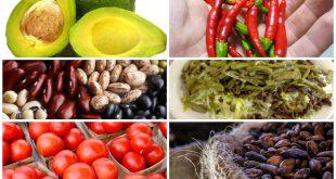 Alimentos y Gastronomía mexicana