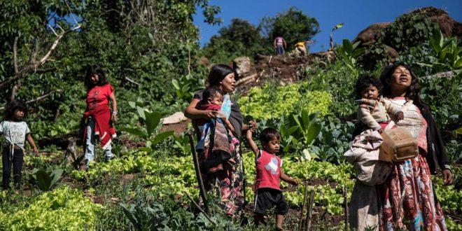 Comunidad-y-Cultura-Mbya-Guaraní