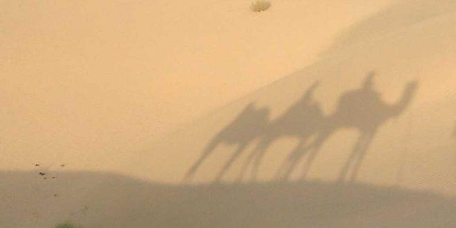 Las-sombras-de-nuestros-pasos-por-el-desierto-de-Thar