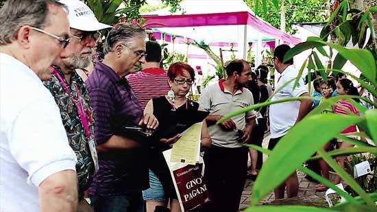 Festival-de-la-Orquídea-en-la-ciudad-de-Moyobamba2