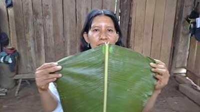 indigenas-de-la-selva-del-perú-2