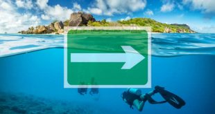 tendencias-en-el-turismo