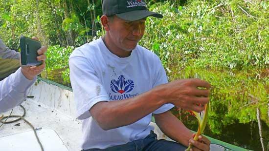 José Sequea es uno de los socios de WaraoWitü