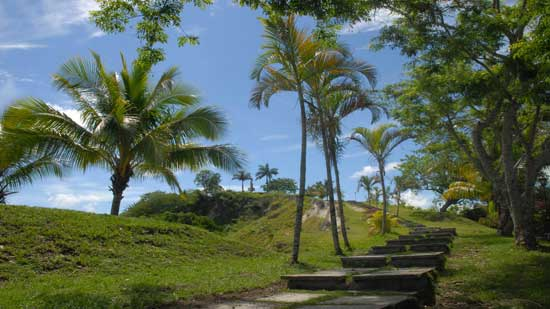 Escalinata en la Loma del Capiro