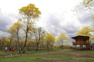 Hacienda Las Habras