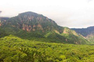Parque Nacional Aguaragüe