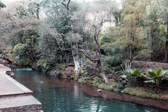 Parque Taretán