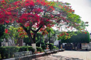 Plaza Central de Tototlán