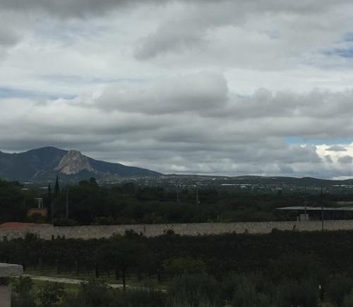 Vista desde el restaurante de las Bodegas De Cote