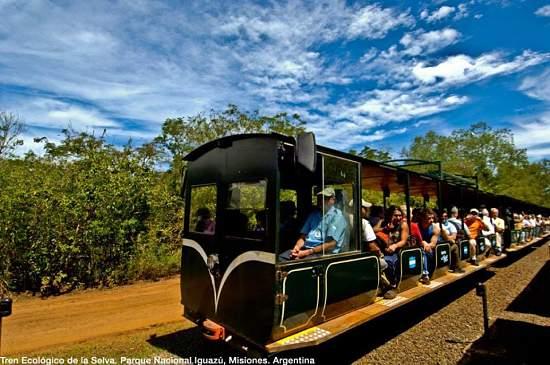 Tren de la Selva en Argentina