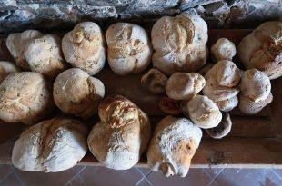 Malcata pan
