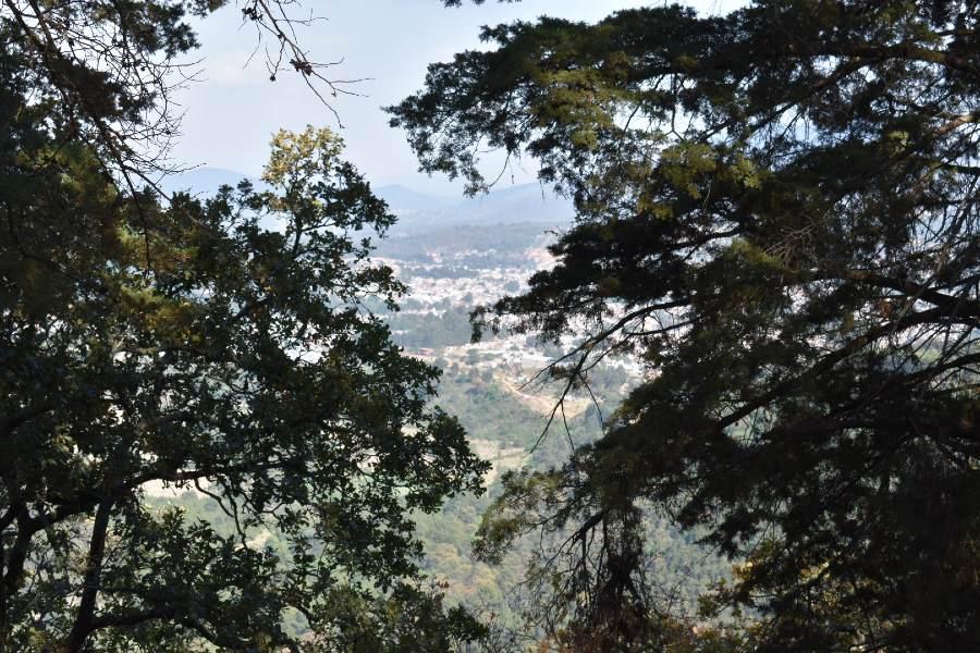 vegetación y vista del Estribo