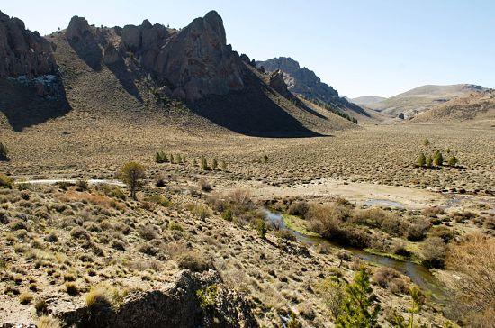 Estepa Bariloche