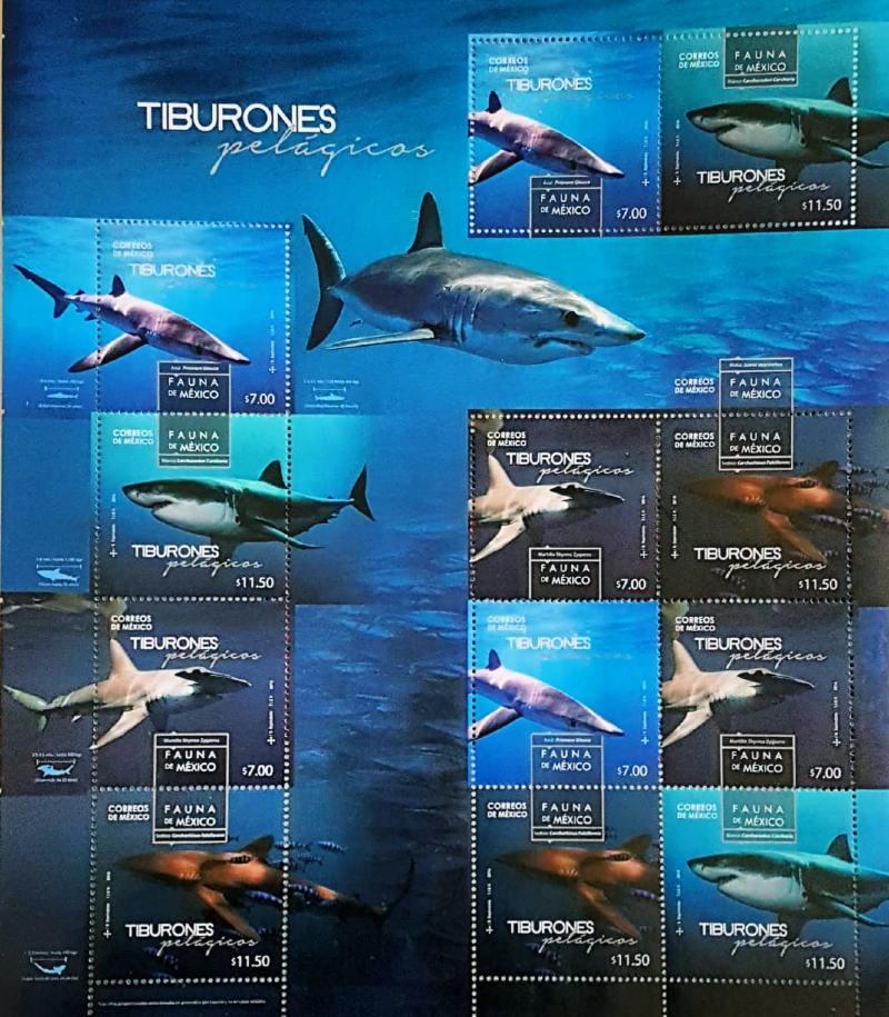 tiburones pelágicos estampillas