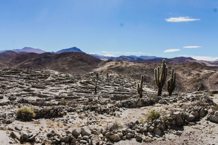 Yacimiento arqueológico en Santa Rosa de Tastil