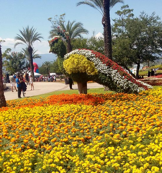 Jardines de México 2
