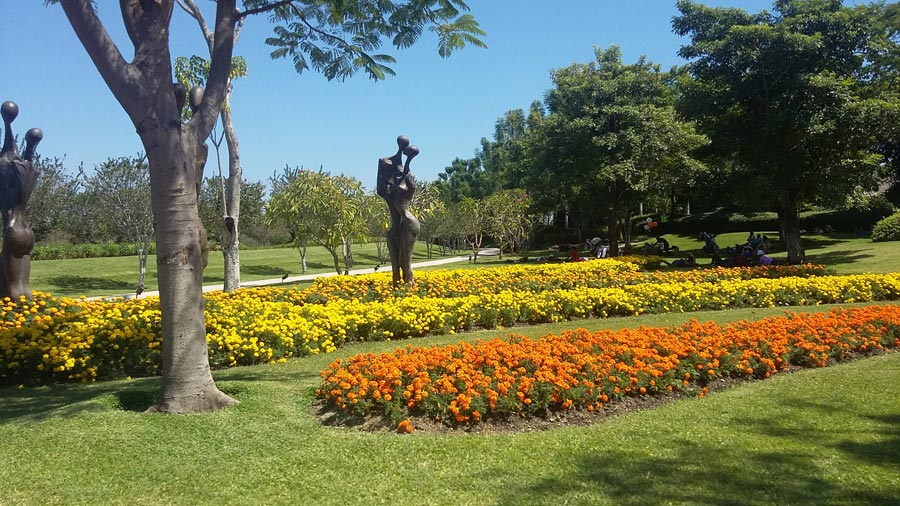 Jardines de México 4