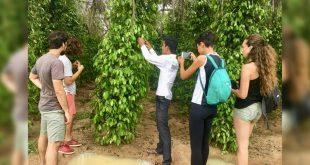 Ruta Pimienta en Camboya