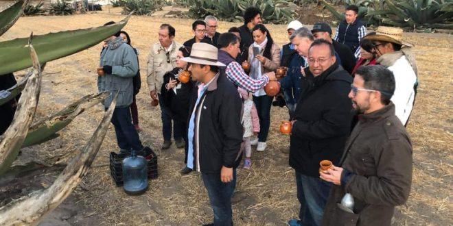 Experiencia aguamiel Hacienda Tecoac en Huamantla