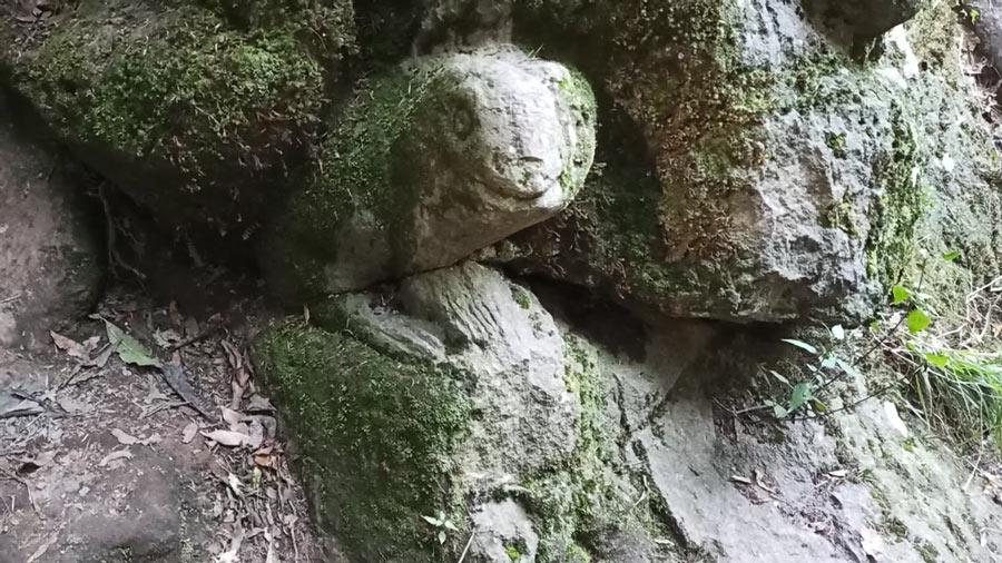 Labrado de lo que parece una rana en La Cueva de los deseos