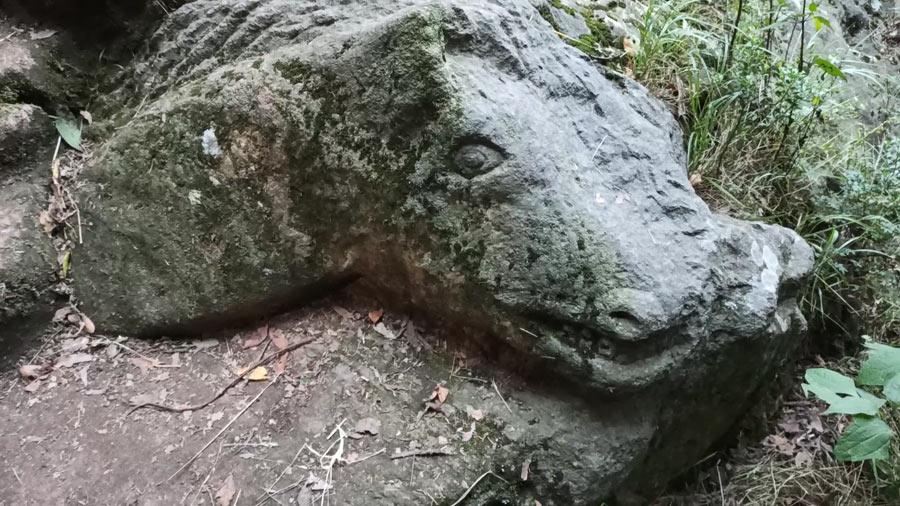 Labrado de un caballo en la cueva del segundo dinamo