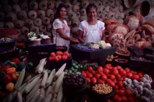 Rutas Gastronómicas de México