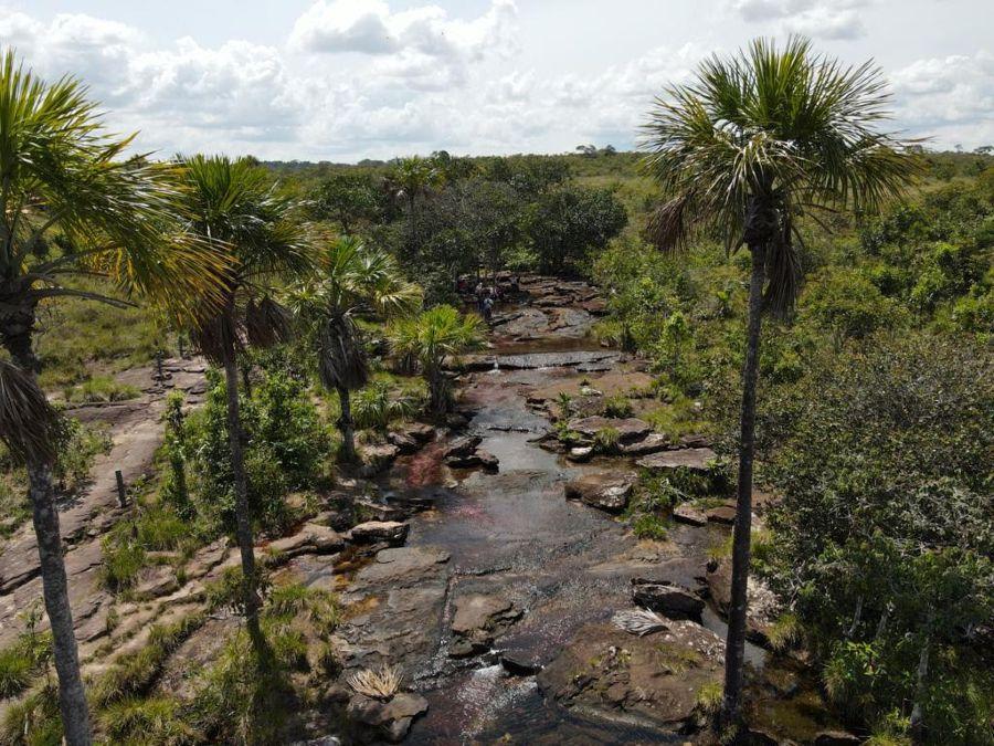 Caño Sabana - Guaviare