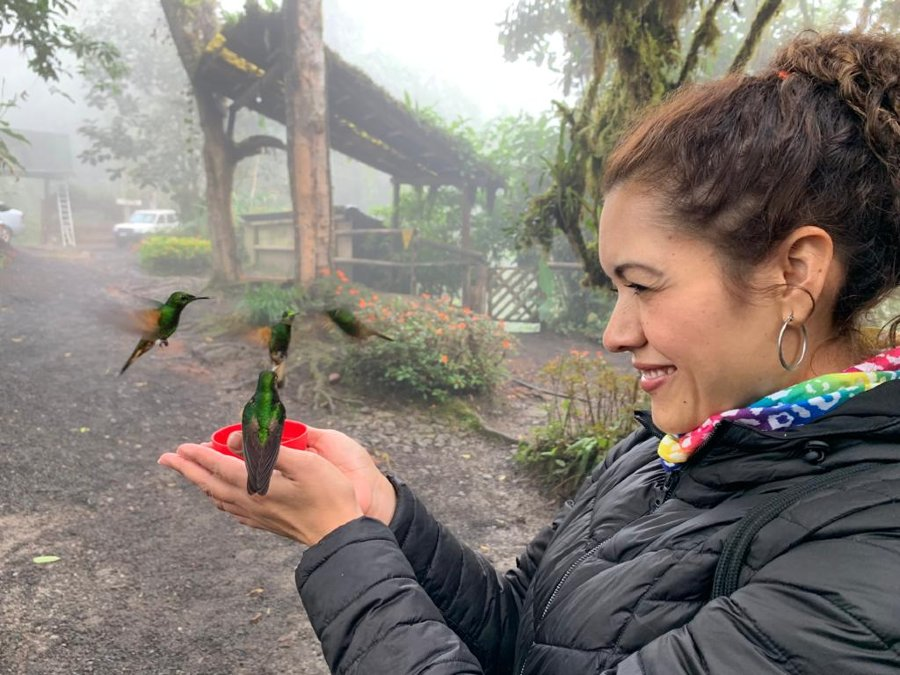 Aviturismo en Bellavista Cloud Forest Reserve