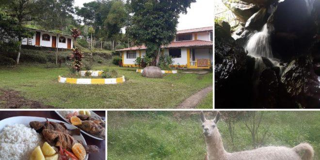 Finca El Manantial Eco-Lodge