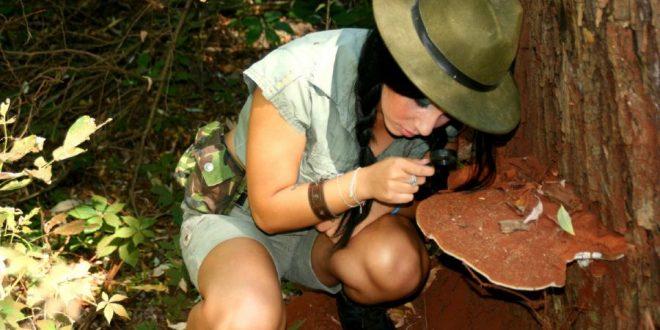 mujer observando hongos con lupa en el bosque