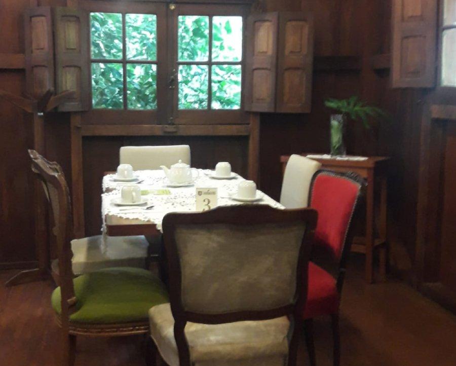 Ruta del té casa de degustación mesa servida
