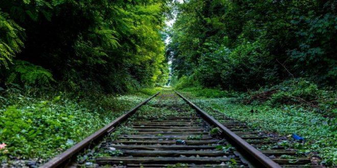 vías de tren en la naturaleza