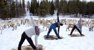 yoga con renos