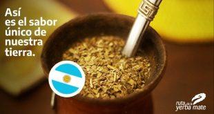 La Ruta de la Yerba Mate en Argentina