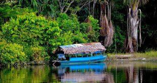 Reserva Natural Allpahuayo Mishana