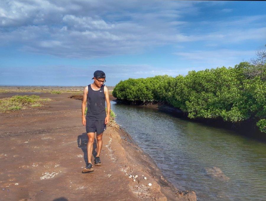 Caminando en el Manglar El Mogote