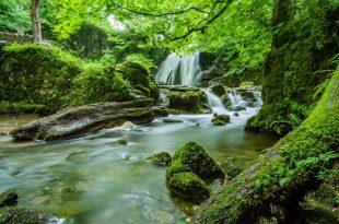 Naturaleza y una cascada