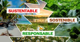 sustentable, sostenible, responsable